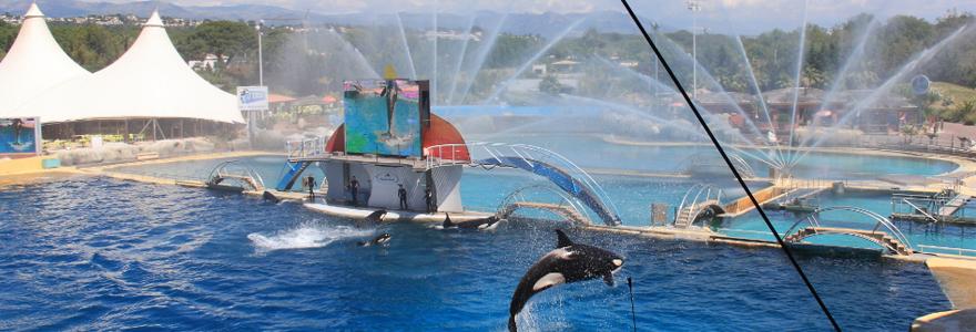 Parc aquatique marineland Antibes